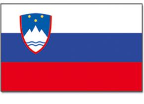 flag_4