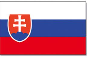 flag_8